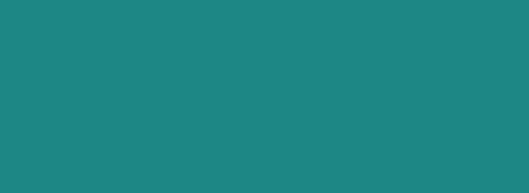 Logo of Vigorous IT Solution
